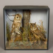 A Victorian preserved taxidermy specimen of a Tawny Owl (Strix aluco) Together with a Victorian