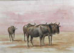 ANNABEL POPE (20th/21st century) British, Wildebeest, watercolour,