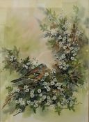 TESSA BERESFORD, Bird Amongst Foliage, watercolour, dated '89,