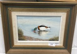 ROGER FISHER, Ducks and Flamingos, a pair of oils on board,