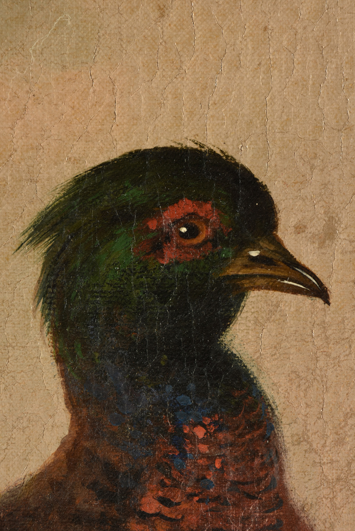 """Lot 36 - MUNICH SCHOOL (19th Century) A PAINTING, """"Pheasant Family,"""" GERMAN, oil on canvas, signed L/R, """"A."""