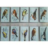 Trade Cards, Birds, Tetley Tea, British Birds (vgd)