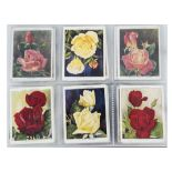 Cigarette Cards, Wills, a further collection of L sized sets, in a modern ringbinder, to name Roses,