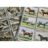 Cigarette Cards, Mixture, a large collection of odd cards and part sets, all larger sized, various
