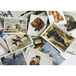 Cigarette Cards, Mixture, a large collection of loose cards, (majority L sized) mixed genres and