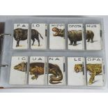Cigarette Cards, Wills, a collection of sets, held in a modern ringbinder, to name, Animalloys,