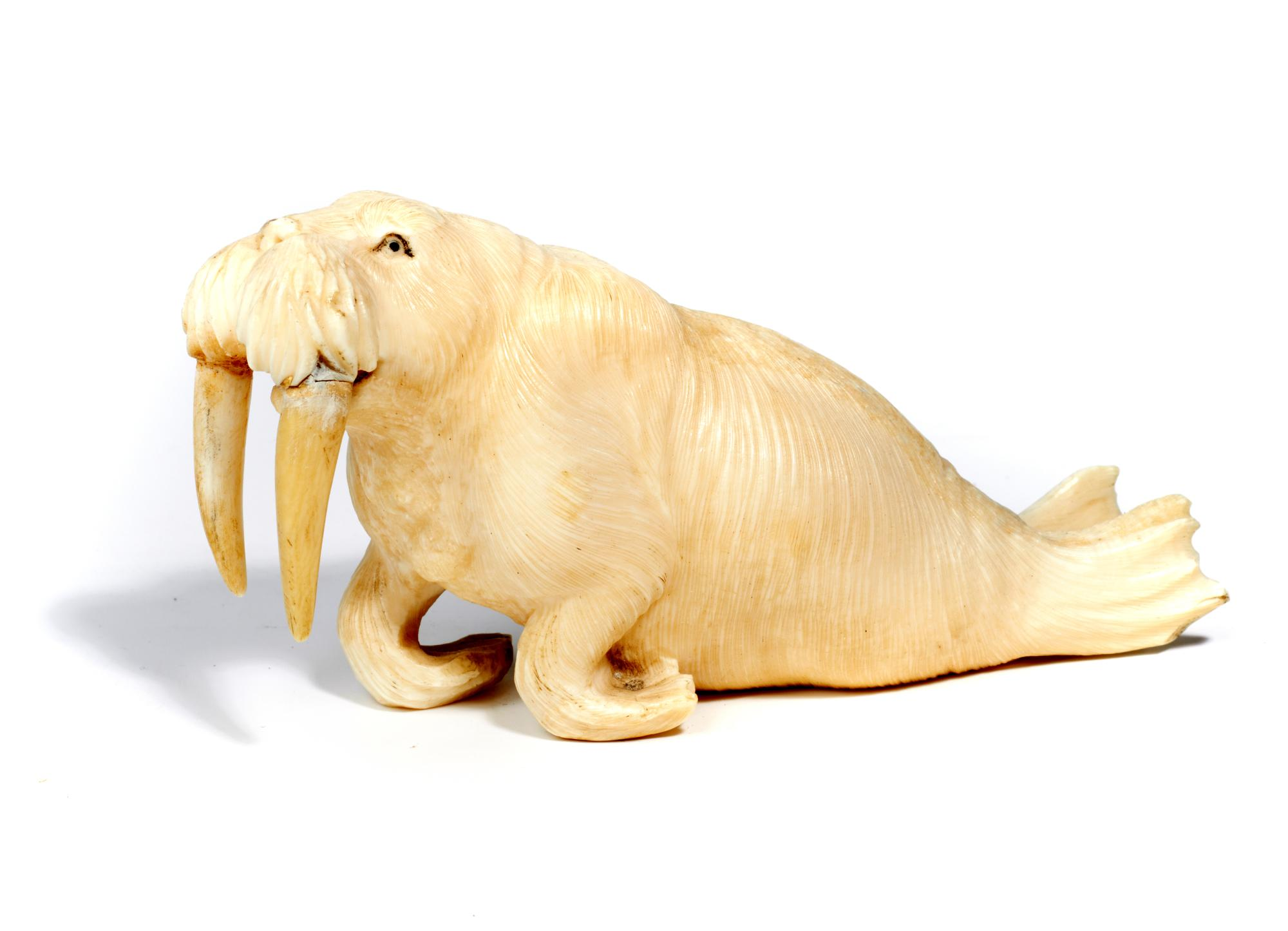 Lot 131 - Oriental/Interior Design: A carved marine ivory walrus, probably Japanese, Meiji Period (1868-1912)
