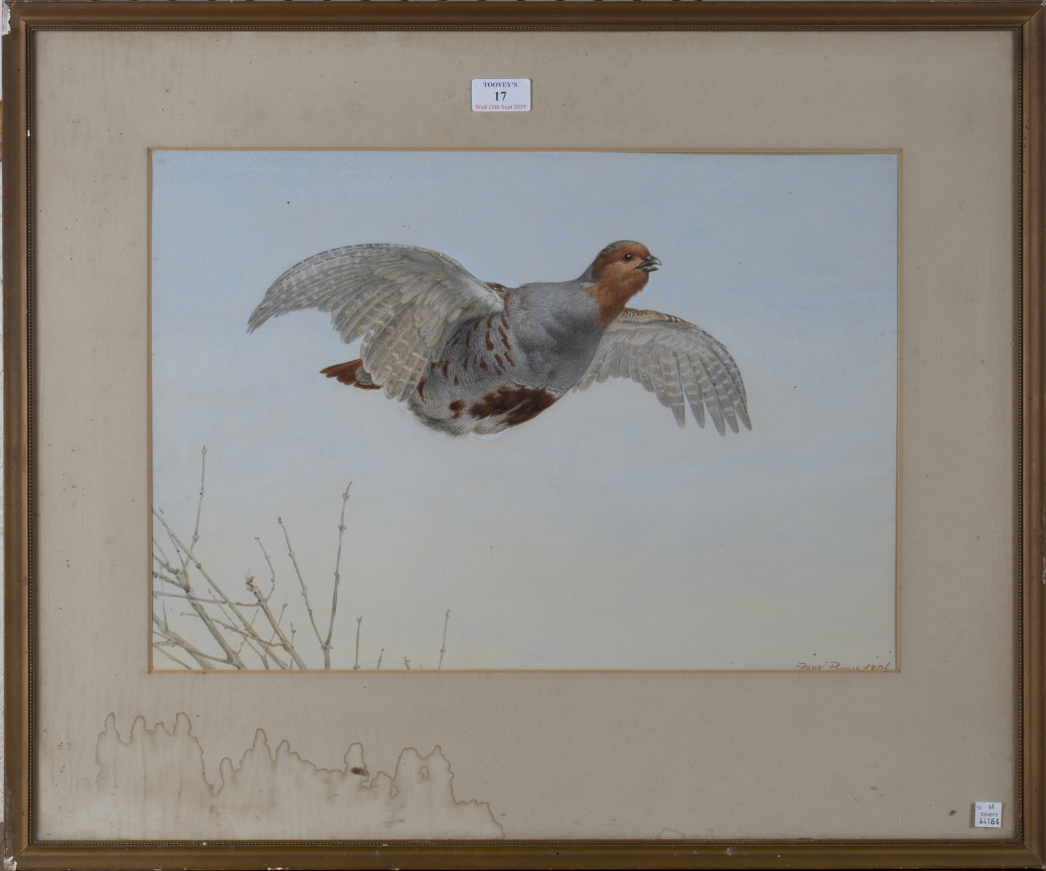 Lot 17 - Frank Paton - Partridge in Flight, late 19th century watercolour, signed and dated 1896, 34cm x 48.