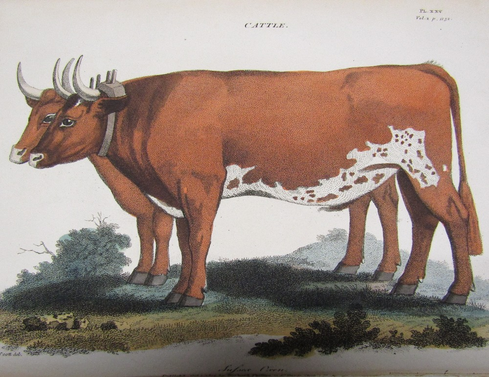 Lot 813 - DICKSON Richard Watson - Practical Agriculture or A Complete System of Modern Husbandry 1807, two