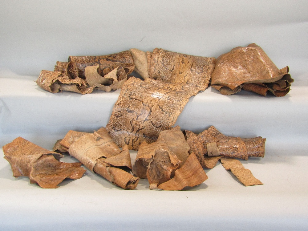 Lot 769 - Several lengths of snakeskin python and other