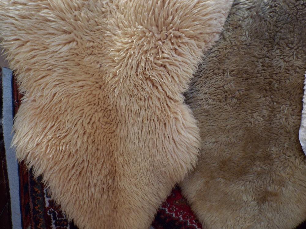Lot 1450A - Three sheepskin rugs