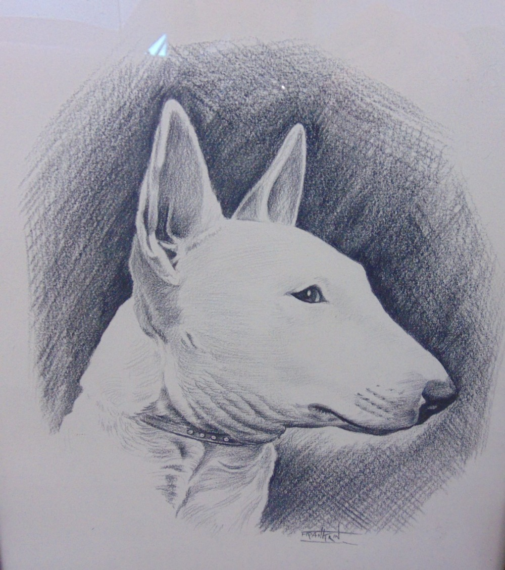 Lot 712 - A collection of dog related pictures to include Sarah Clegg (born 1962) - study of five dog heads,