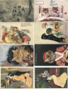 Tiere,Säugetiere,KatzenKatze Sammlung mit circa 400 Ansichtskarten in 5 Alben, oft personifiziert