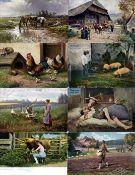 Ausstellungen/Ereignisse,Gartenbau/Landwirtschaft,LandwirtschaftsausstellungLandwirtschaft