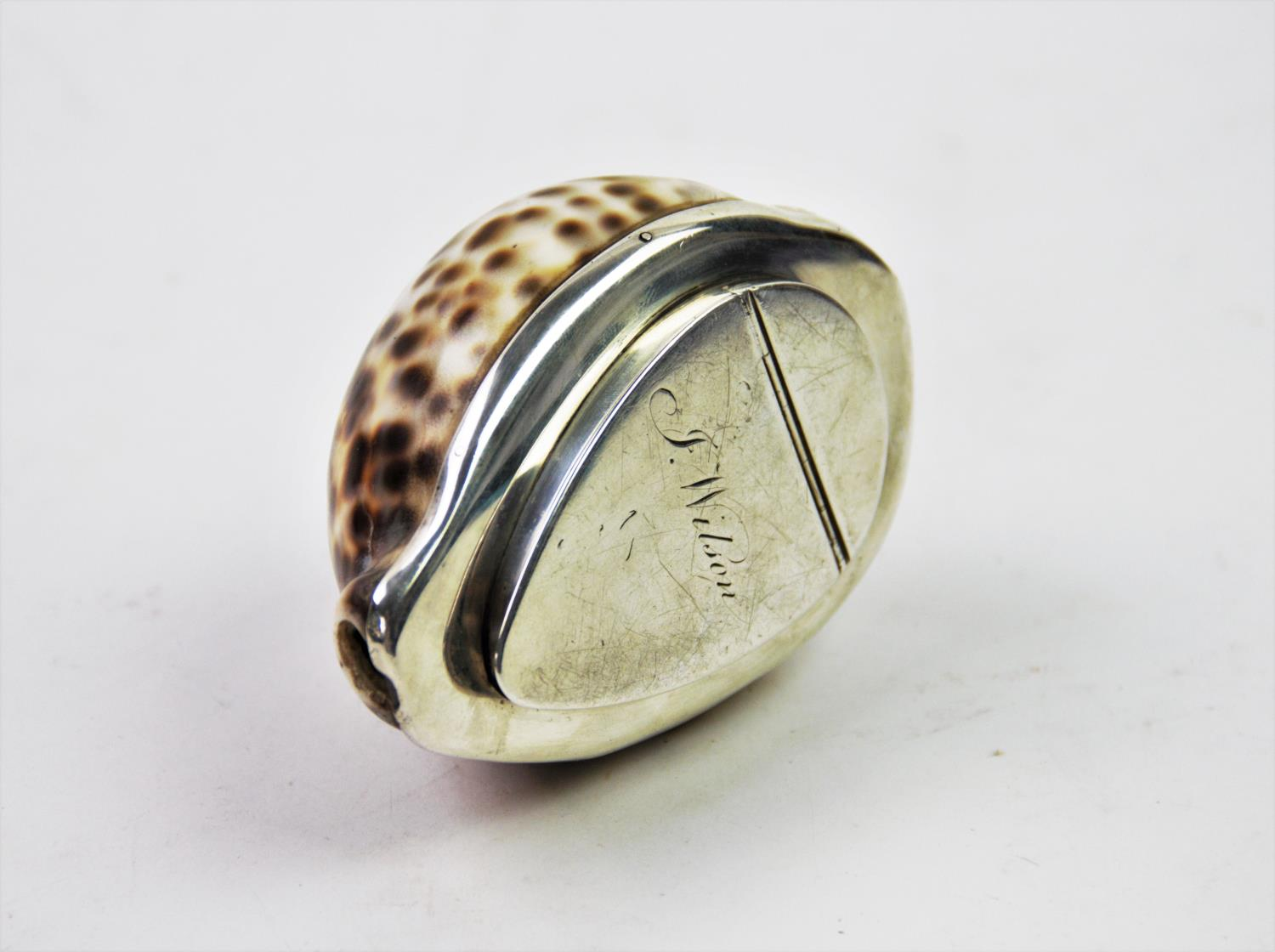 Lot 39 - A 20th century white metal mounted cowry shell snuff box, the shell designed with white metal