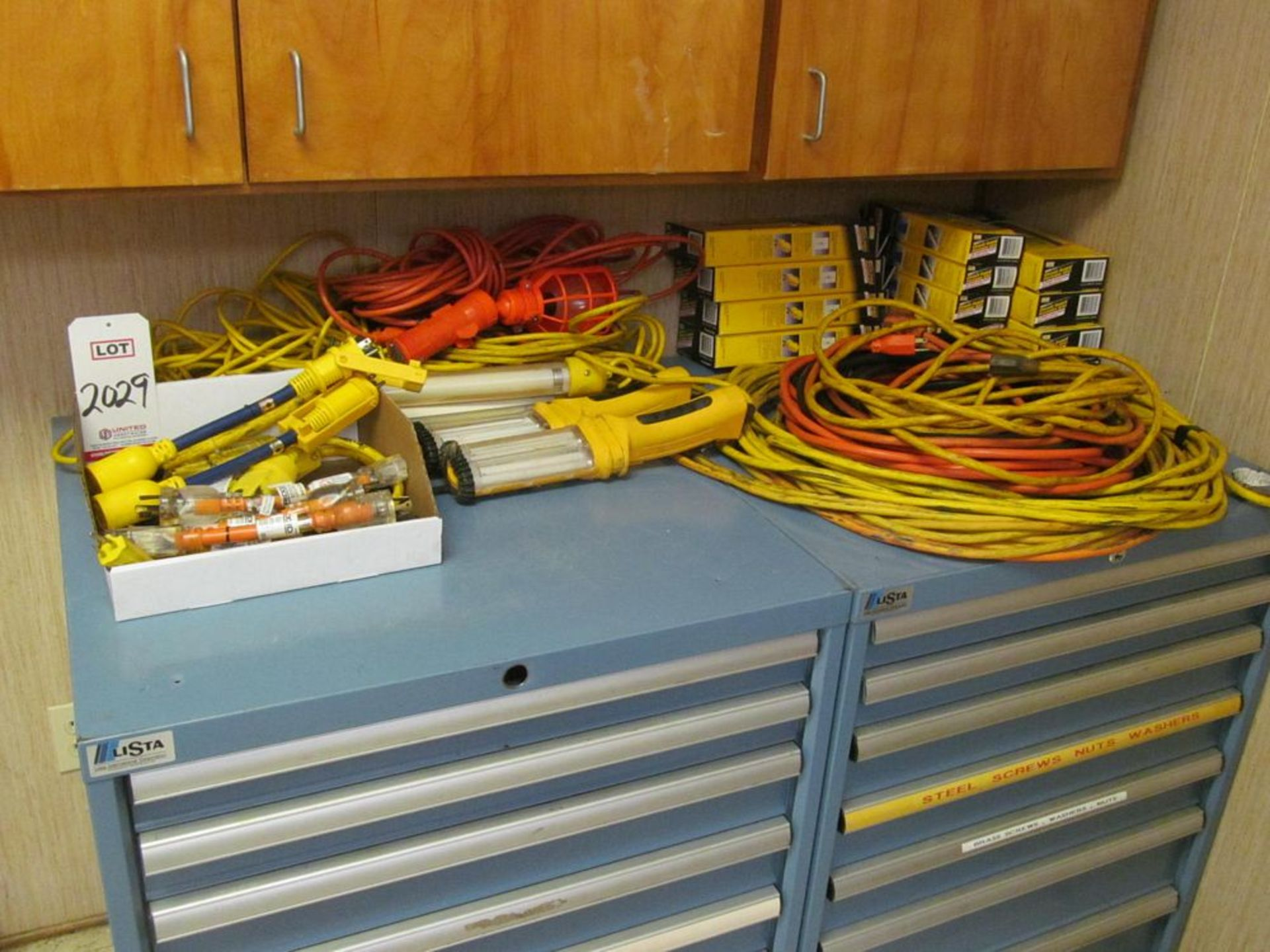 Lot 2029 - LOT - ASSORTED EXTENSION CORDS & WORK LIGHTS (TECH LAB)