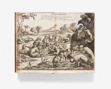 Ludolf, Hiob: Historia Aethiopica, sive brevis et succincta descriptio regni Habessinorum, quod