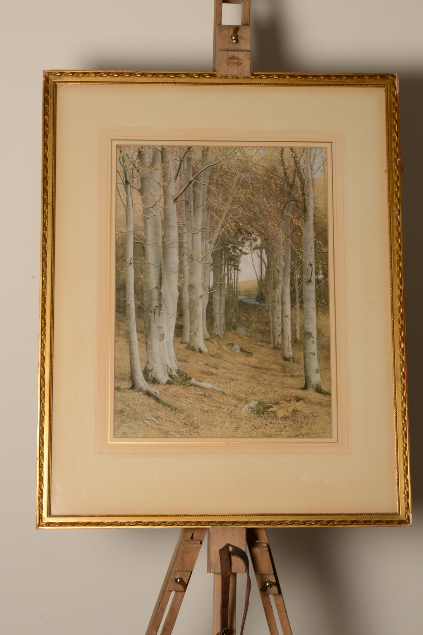 "Lot 24 - Lithograph print of James T Watts ""Nature's Cathedral"
