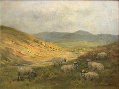 John Murray Thomson 1885-1974 R.S.A, R.S.W, P.S.S.A Sheep on hillside grazing