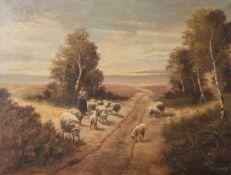 Verhaaf, Hendrik Jan (1881-1970), Landschaft mit einer Schafherde u. einer Bäuerin,Öl/Leinwand, u
