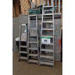 Lot 40 - An Alloy 14-Rung Ladder, An Alloy 5-Tread Step Ladder, An Alloy 4-Tread Step Ladder and An Alloy