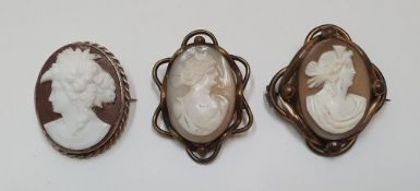 3 antique cameo brooches