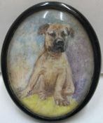 Unsigned, Edwardian watercolour miniature of a puppy, thin original frame and glazed, 4.5 x 3.5 cm