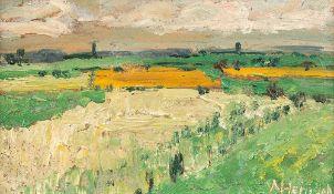 Alfred Heinsohn (1875 – Hamburg – 1927)Weites Land mit dunkelgelbem Feld.Öl au