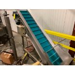 stainless steel incline conveyor