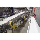 60 ft. long belt conveyor