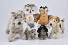 STEIFF 6 Tiere1950-90er, 2x KFS, Schnauzer Tessie, Nr. 4320/ 22, Eule Wittie, Nr. 045608, Eule,