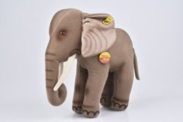 STEIFF Elefant 'Trampy'1975-78, KFS, Nr. 0510/ 28, Trevirasamt, Z 1+