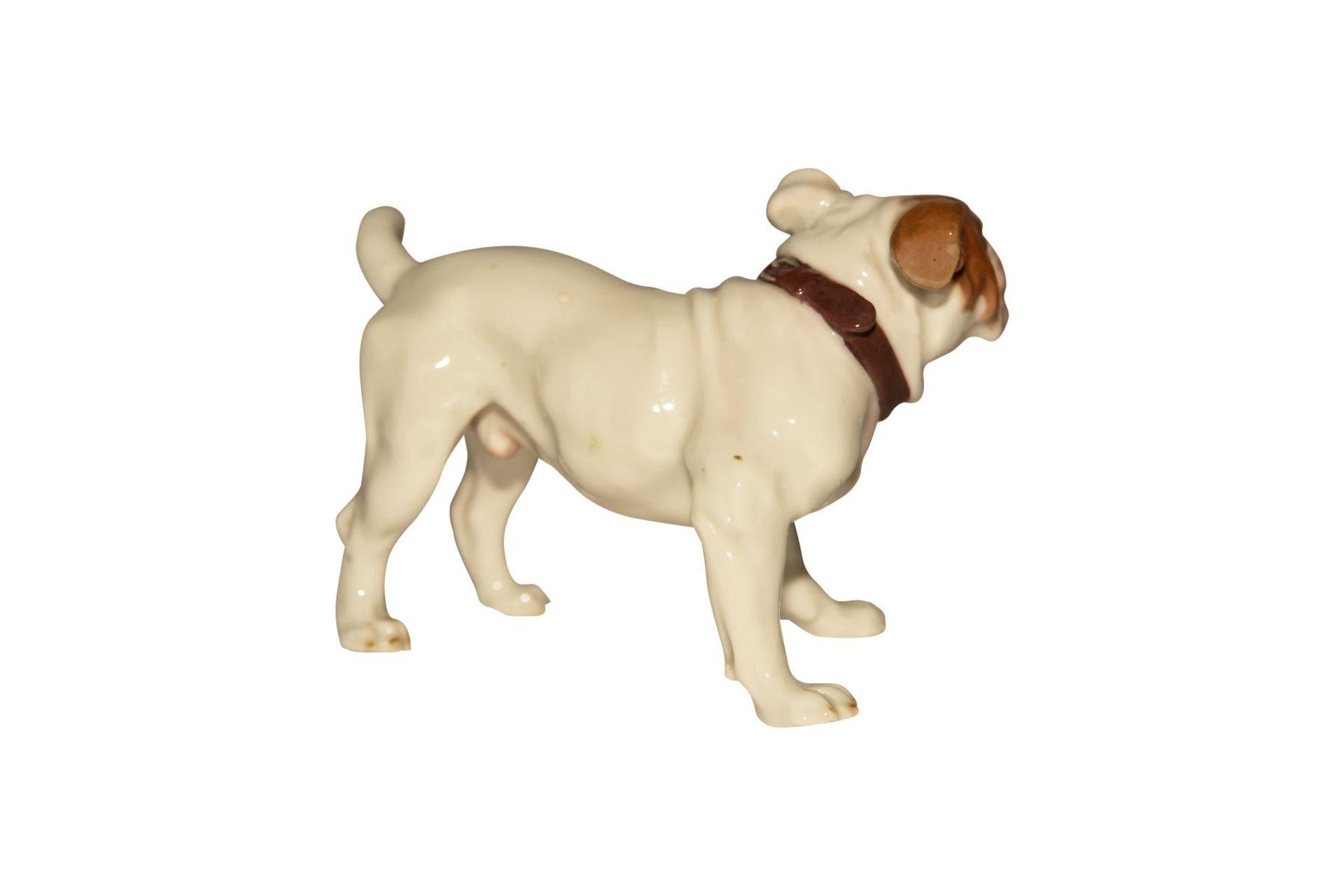 """""""Frazösische Bulldoge"""" Meissen - Bild 2 aus 5"""