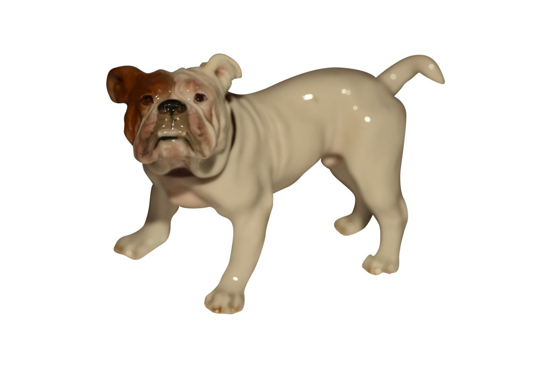"""""""Frazösische Bulldoge"""" Meissen"""