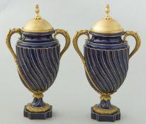 Paar Henkelvasen Sevres mit Bronzemontierung vergoldet