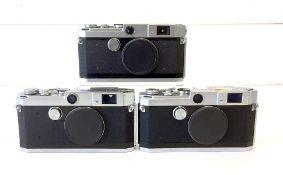Three Canon Rangefinder Camera Bodies.