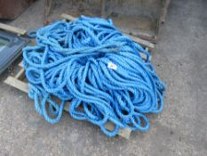 Pallet of heavy duty nylon rope
