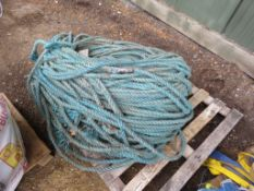 """LARGE PALLET OF NYLON ROPE................................... ADDITIONAL TERMS: All items """"sold as"""