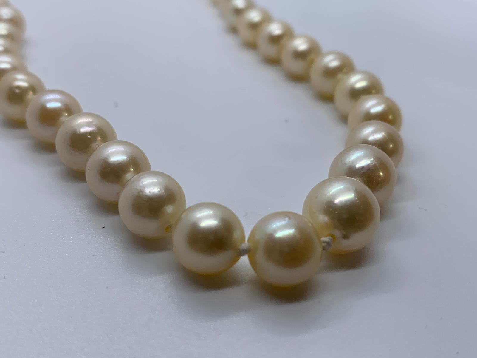 Lot 18 - Strand of pearls