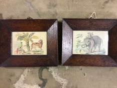 Indian School. Two miniature watercolour images of South Asian flora and fauna on cream white panels