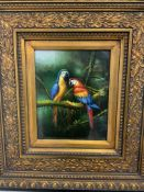 An oil painting of two macaws in ornate frame. W:19cm x D:cm x H:24cm
