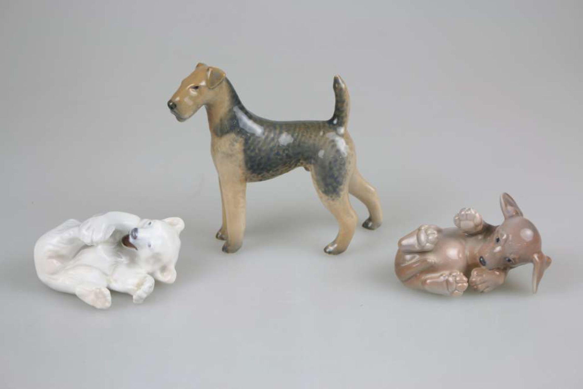 Konvolut von 3 Tierfiguren, Royal Copenhagen, 20. Jh., polychrom gefasst, bestehend aus: junger