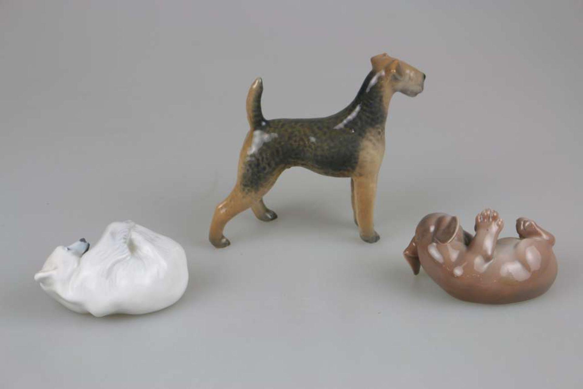 Konvolut von 3 Tierfiguren, Royal Copenhagen, 20. Jh., polychrom gefasst, bestehend aus: junger - Bild 2 aus 3