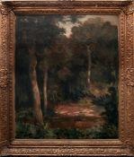Waldlandschaft mit Teich von Karel Jan Sigmund