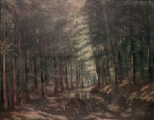 In einem Wald von Antonín Hudeček