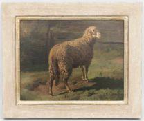 ANTON BRAITH, Sich sonnendes Schaf, Öl/Lw, 19. Jh.<