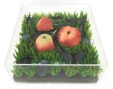 Piero Gilardi, Mele cadute/ gefallene Äpfel, Polyurethan in Plexiglas, Italien 1977.Piero Gilardi (