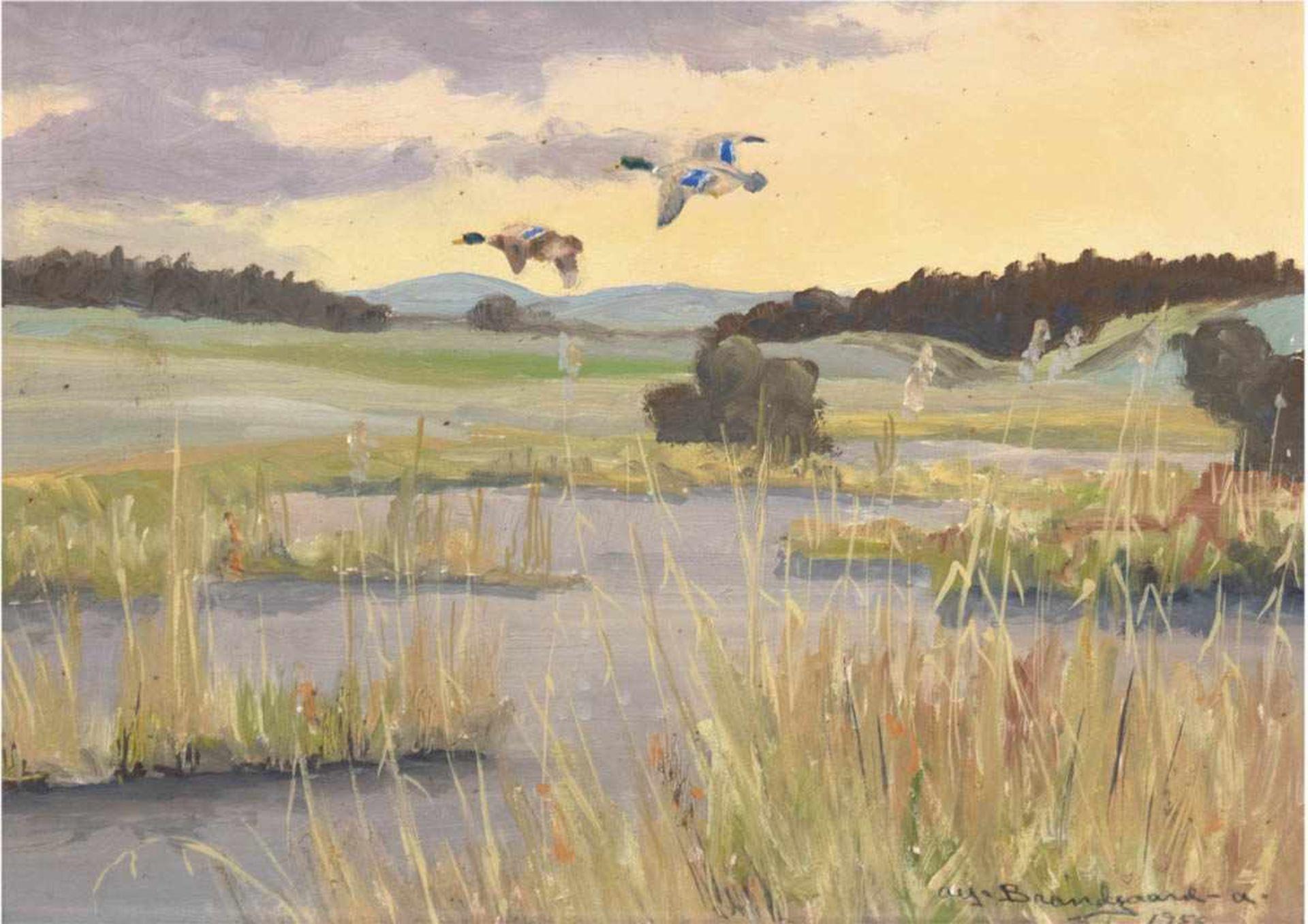 """Braendgaard-Andersen, Alfred (1901 Aarhus-?) """"Enten über Seenlandschaft"""", Öl/Hf., sign. u.dat."""