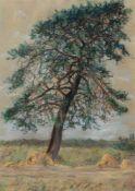 """Holtz-Sommer, Hedwig (1901 Berlin- 1970 Wustrow) """"Darßer Landschaft"""", Farbstiftzeichnung,monogr. u."""