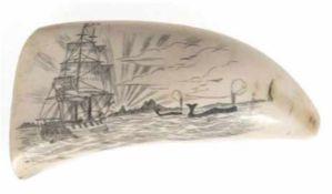 Großer Pottwalzahn, graviert und geschwärzt, Segelschiff- und Walmotiv vor Küste,